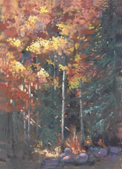 A Light in the Forest, Jan Thompson