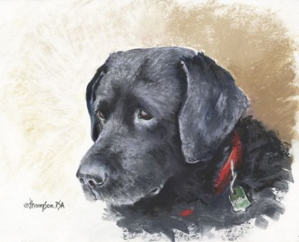 Black Labs Matter, Jan Thompson