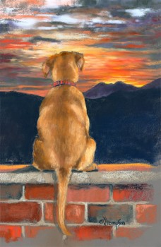 Sunrise For Sadie, Jan Thompson